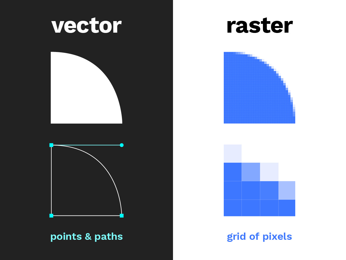 Vector and raster images