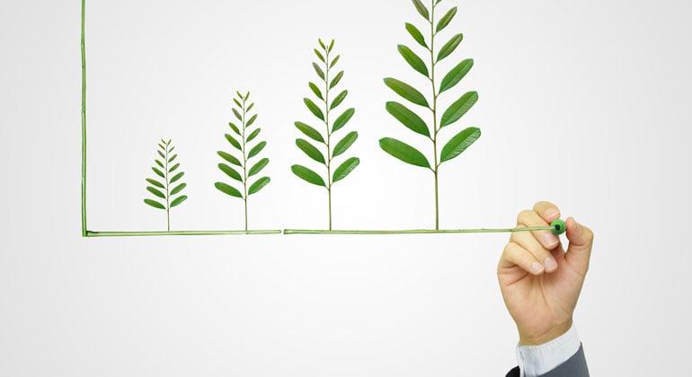 Sustainability reporting chart
